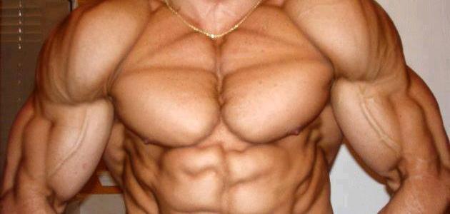 كيفية أبراز عضلات البطن