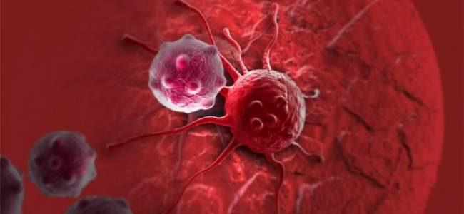 أبرز أنواع الحمية الغذائية التي تقاوم مرض السرطان
